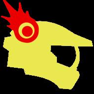 pollomaslerz14