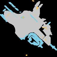 Flukavitch