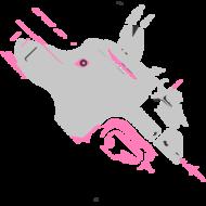 jakelstine