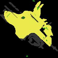 hircinus