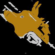 Dravonik