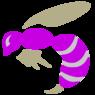 zoologic19