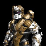 Titanium7Shield