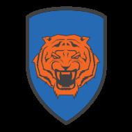Tiger Squad