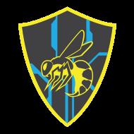 Hornet Patrol