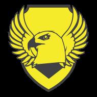 Spartan Team Golden