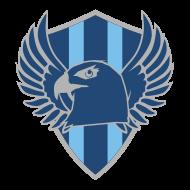 260th Airborne Company