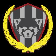 Team Badger Claw