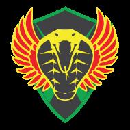 Fireteam 0siris