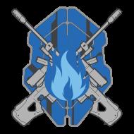 FireTeamStormy