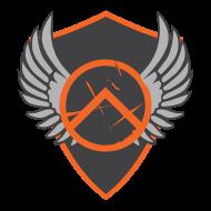 Aerial Combat Experts