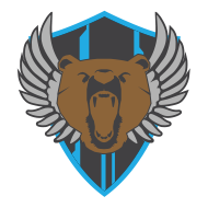 Super Stellar Bear Squad