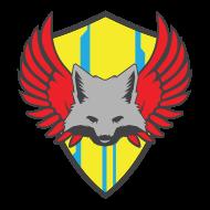 Spartan IIIs Sparta Team